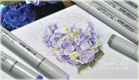 Hydrangea_D01d