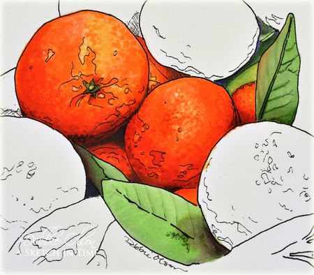 Oranges-DO1b