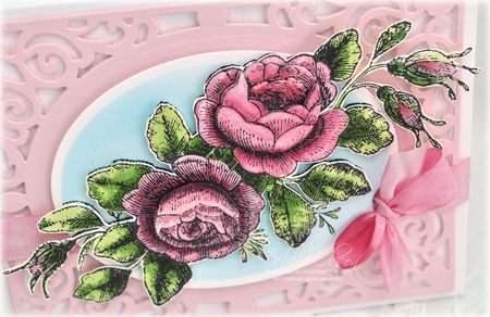 JRP_Roses1c_Deb-Olson