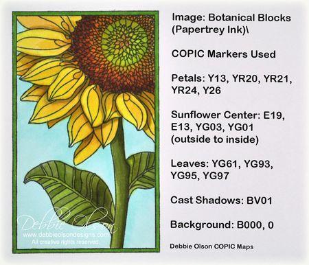 Spb_PTI-Botanical-Blocks1d_Deb-Olson