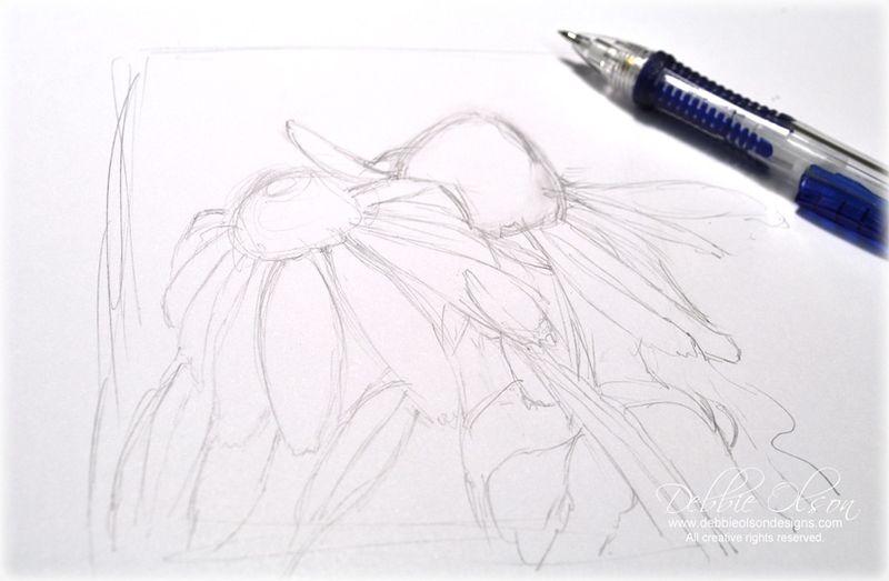 LC_Echinacea1b_Deb-Olson