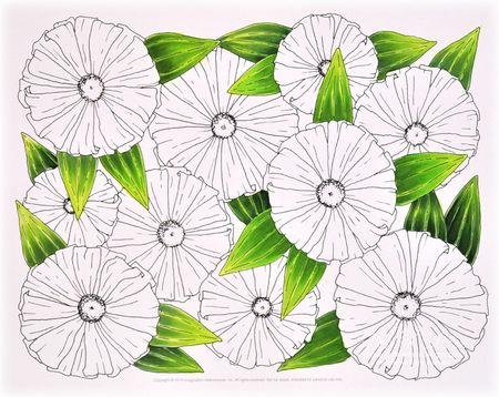 Coloring Pages Zinnia : Coloring for grown ups. . . thinking inking