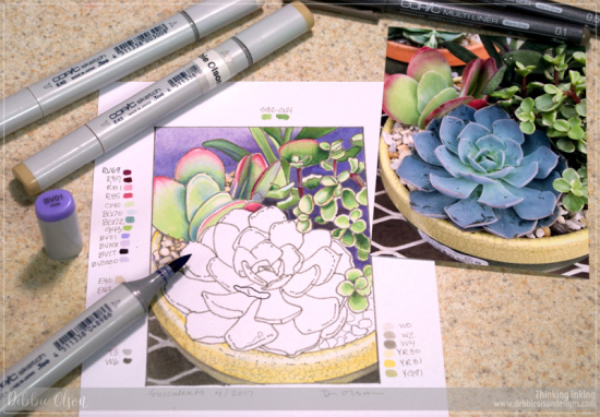Copic_Succulents-2_Deb-Olson