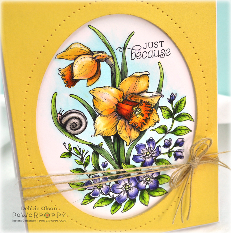 PPop_Daffodils1c_Deb-Olson