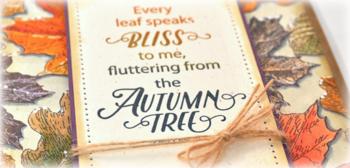 JC_Autumn1d_Deb-Olson
