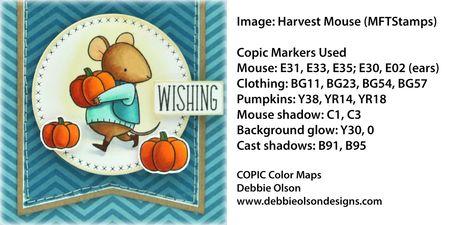 MFT_HarvestMouse2b_Deb-Olson