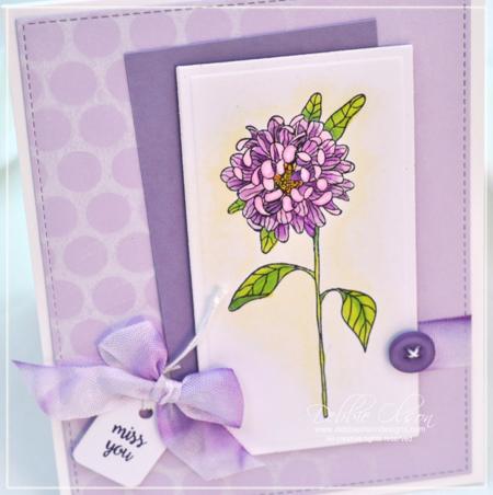 JRP_Chrysanthemums1c_Deb-Olson