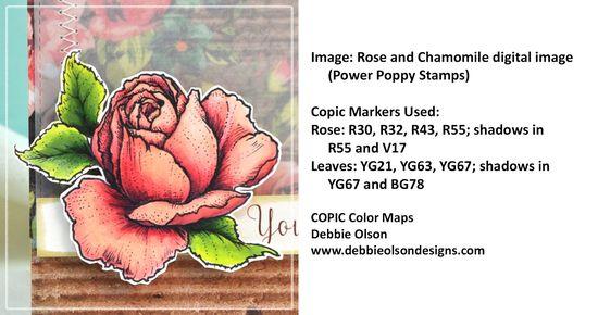PP_Simple-Rose1b_Deb-Olson
