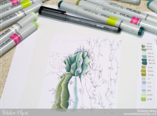 Copic-FMS_Cacti4_Deb-Olson