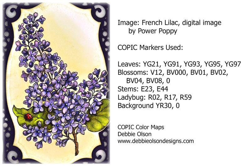 PP_Lilacs_Cp_Spb1c_Deb-Olson