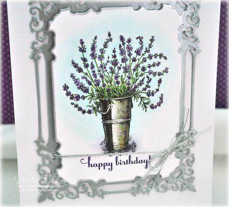 PPop-Lavender2c_Deb-Olson