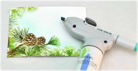 WMS_Festive-Foliage-2c_Deb-Olson