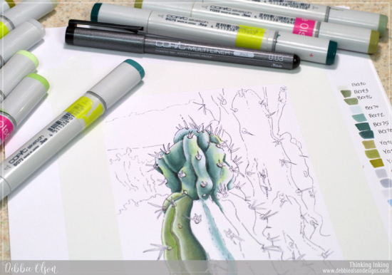 Copic-FMS_Cacti5_Deb-Olson